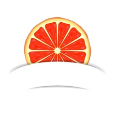 Grapefruit with paper banner vector image vector image