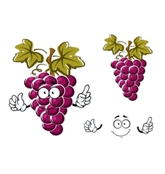 Cartoon purple grape fruit character vector image
