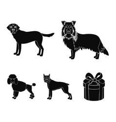 Dog laika beagle and other web icon in black vector