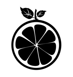 half citrus fruit icon vector image