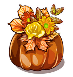 handmade autumn decor of dried flowers yellowed vector image