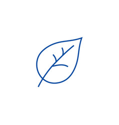 leaf line icon concept leaf flat symbol vector image