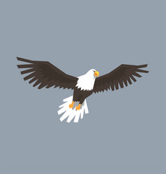 North american bald eagle flying symbol of vector