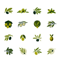 Olive branch Set of logos and icons vector