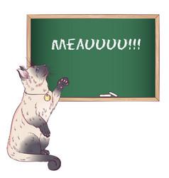 Siamese cat near a chalkboard vector