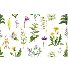 Watercolor seamless pattern with field vector
