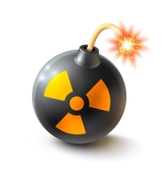 Bomb Realistic vector image vector image