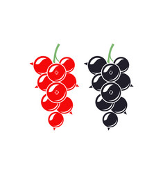 black currant and red currant vector image