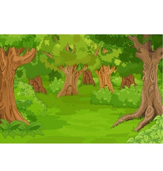 Forest Glade vector image vector image