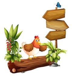 A chicken near the arrow board vector image