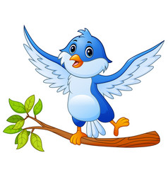 Cartoon blue bird standing on tree branch and posi vector