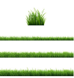 Green grass frames set in isolated transparent vector