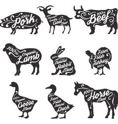 farm fresh meat vector image
