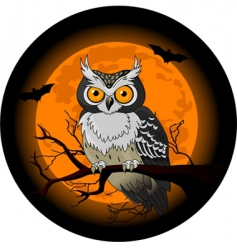 Owl night vector