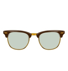 Classic brown sunglasses clubmaster vector image