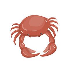 Crab fresh seafood shellfish cartoon vector