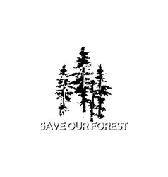 Evergreen pines tree forest and creek river vector