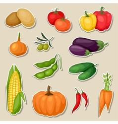 Sticker icon set of fresh ripe stylized vegetables vector image
