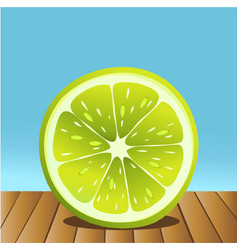 Summer lime fruit vector