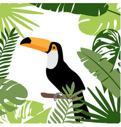 toucan bird with exotic tropical leaves and vector image
