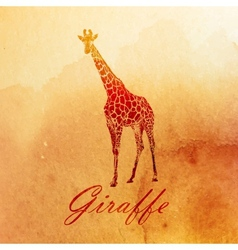Vintage a watercolor giraffe on old paper vector