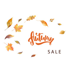 watercolor autumn sale card template design vector image