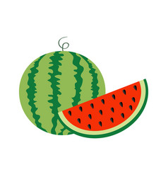watermelon whole ripe green stem slice cut half vector image