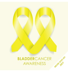 bladder cancer ribbon vector image