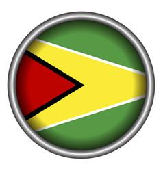 isolated flag of guyana vector image