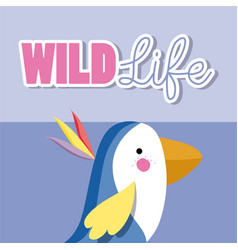 bird wildlife animal cartoon vector image