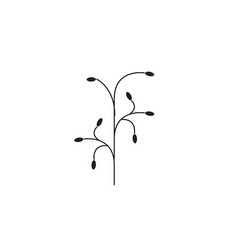 botanical branch black concept icon vector image