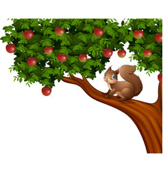 cartoon squirrel on apple tree vector image