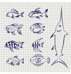 Hand drawn sketch fish vector