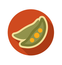 Pea flat icon vegetable vector