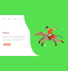 polo sports man riding horse hitting ball web vector image