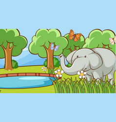 scene with wild elephant in forest vector image