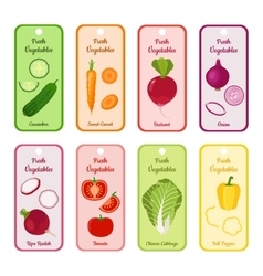 Set of blank with different vegetables in vector