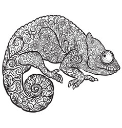 zentangle stylized multi coloured chameleon vector image