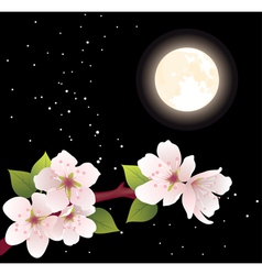 cherry branch and moon vector image vector image