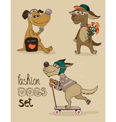 fashion dog vector image