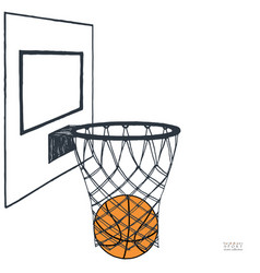action of basket ball in the vector image