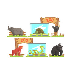 animals in zoo set rhino turtle ostrich vector image