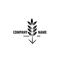logo design for agriculture agronomy wheat farm vector image