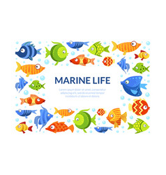 marine life frame cute colorful fishes border vector image