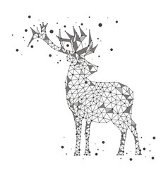 polygonal deer on white background vector image