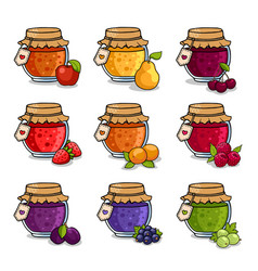 Set of colored jars with delicious homemade jam vector