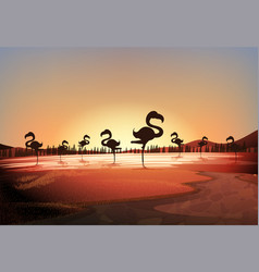 silhouette scene with flamingos standing in lake vector image