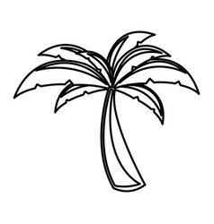 white background with monochrome palm tree vector image