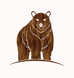 big brown bear standing graphic vector image