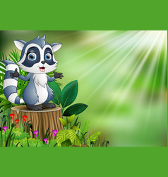 cartoon of a raccoon standing on tree stump with g vector image